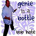 Bob Hate Genie In A Bottle