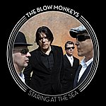 The Blow Monkeys Staring At The Sea