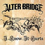 Alter Bridge I Know It Hurts