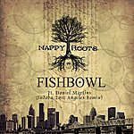 Nappy Roots Fishbowl (Indaba/Lost Angeles Remix)