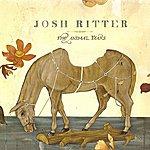 Josh Ritter The Animal Years