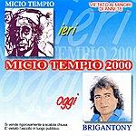 Brigan Tony Micio Tempio 2000