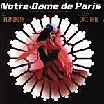 Noa Notre Dame De Paris (Highlights)