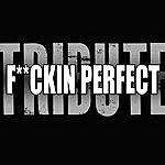 A-Team F**kin' Perfect (Pink Tribute)