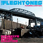 Fleshtones Brooklyn Sound Solution