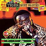 Tiger Most Wanted