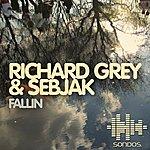 Richard Grey Fallin