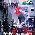 Emporium Elevate (A Tribute To Trumptonshire) - Single