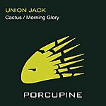 Union Jack Cactus/Morning Glory