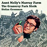 Stefan Grossman Aunt Molly's Murray Farm / The Gramercy Park Sheik