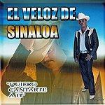El Veloz De Sinaloa Quiero Cantarte A Ti