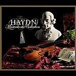 Leonard Slatkin Haydn - The Masterworks Collection
