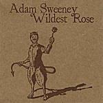 Adam Sweeney Wildest Rose