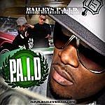 Bailey Baileys P.A.I.D