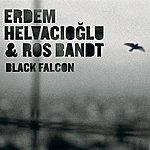 Ros Bandt Black Falcon