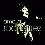 Amália Rodrigues Fado Spirit Vol. 2