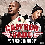 Cam'ron Speaking In Tungs