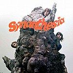 Synanthesia Synanthesia