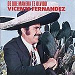 Vicente Fernández De Que Manera Te Olvido