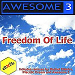 Awesome 3 Freedom Of Life (The 2011 Remixes)