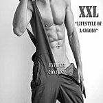 XXL Lifestyle Of A Gigolo