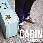 Branches Cabin