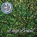 Deep Forest Deep Brasil