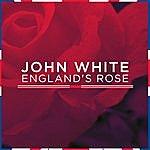 John White England's Rose