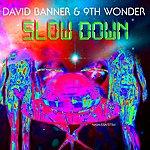 David Banner Slow Down