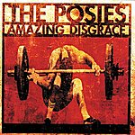 The Posies Amazing Disgrace (Explicit Version)