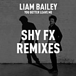 Liam Bailey You Better Leave Me (Remixes)