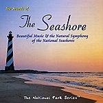 Tim Heintz The Sounds Of The Seashore