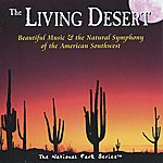 Tim Heintz The Living Desert