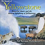 Tim Heintz The Sounds Of Yellowstone