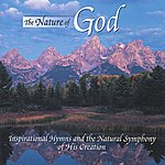 David Goldblatt The Nature Of God