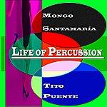 Tito Puente Life Of Percussion