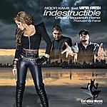 Latin Fresh Indestructible (Official Reggaeton Remix) (Feat. Latin Fresh & Prod By Fainal) - Single