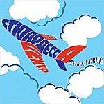 The Center Summer Lines Stewardess