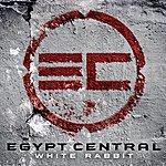 Egypt Central White Rabbit [Single]