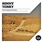 Sonny Terry Pick A Bale Of Cotton