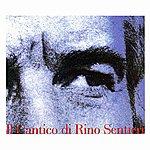 Joe Sentieri IL Cantico DI Rino Sentieri ('cronache' DI Un Genovese Errante Che Canta Storie E Racconta Canzoni)