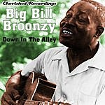 Big Bill Broonzy Down In The Alley