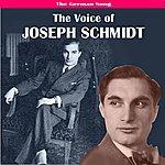 Joseph Schmidt The German Song: The Voice Of Joseph Schmidt