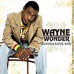 Wayne Wonder Gonna Love You (Ep)