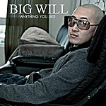 Big Will Anything You Like - Single