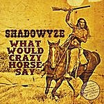 Shadowyze What Would Crazy Horse Say