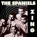 The Spaniels Zing