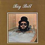 Big Bill Big Bill