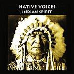Sacred Spirit Meditation, Native Spirits