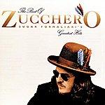 Zucchero The Best Of Zucchero Sugar Fornaciari's Greatest Hits (U.S. Version)